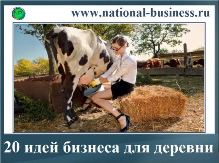 20 идей бизнеса в деревне